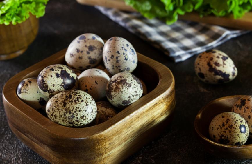 4 Bahaya Telur Puyuh Bagi Kesehatan, Bisa Meningkatkan Kanker