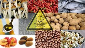 Jangan Pernah Konsumsi Makanan Ini Saat Mentah Loh, Ketahui Akibatnya!